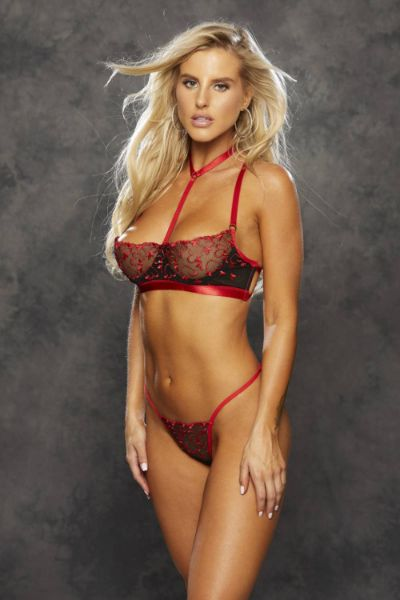 Picture of Shirley of Hollywood 25795 Heart Embroidery Bra Set